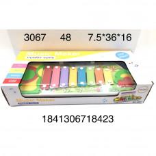 3067 Музыкальный инструмент Ксилофон, 48 шт. в кор.