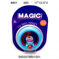 8801 Логическая игрушка с шариком, 480 шт. в кор.